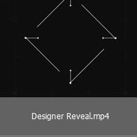 designer-reveal